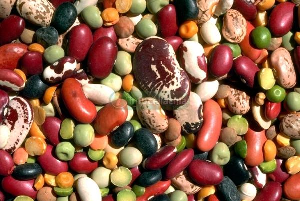 Arriva la pasta di legumi per aiutare i celiaci sovrappeso