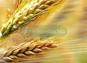 Puglia all'avanguardia nella tutela dei celiaci